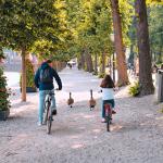 De mooiste fietsroutes in en rondom Den Haag!